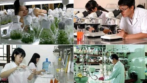 Công nghệ môi trường tại Việt Nam vẫn chưa phát triển