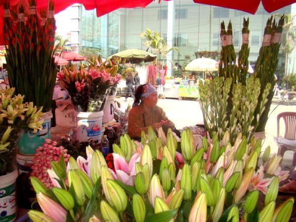 Kinh doanh hoa tươi ngày Tết thu lãi cao