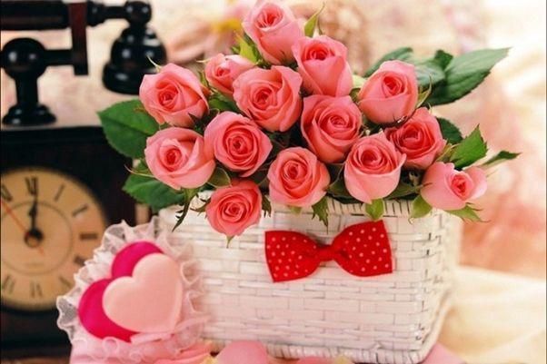 Hoa Hồng - loài hoa tặng mẹ với ý nghĩa sâu sắc