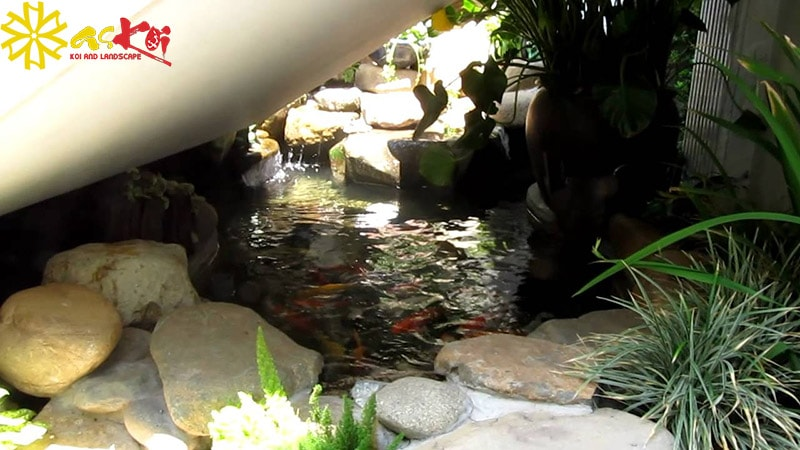 Không nên làm bể cá dưới gầm cầu thang quá chật hẹp và thiếu ánh sáng