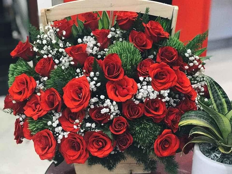 Cắm hoa theo hình vòm là 1 trong số các thế cắm hoa cơ bản